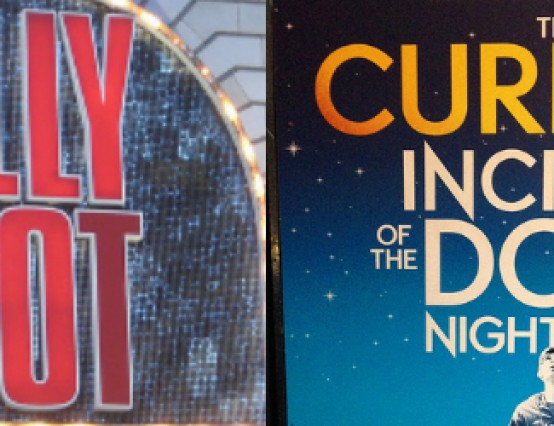 The best plays of the decade are: The Curious Incident of the Dog in the Night-Time and Billy Elliot