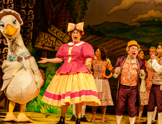 Mother Goose- Marlowe theatre pantomime 2019