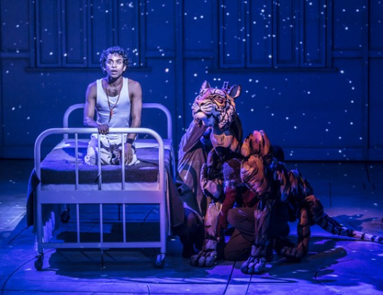 Life of Pi at Sheffield's The Crucible Review